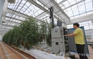 카자흐스탄에 한국형 스마트팜 시범온실 착공